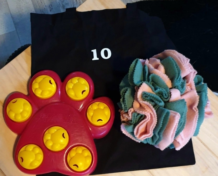 Speel-o-theek tas 10
