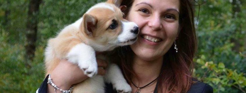 Waarom privé puppycursus?